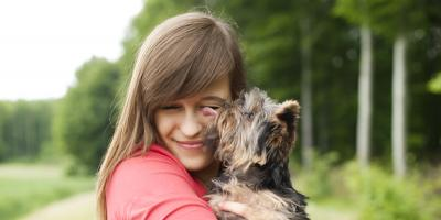 3 Vaccines Your Dog Needs Before Going to Dog Day Care, Highland Village, Texas