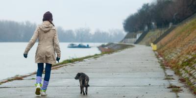 4 Helpful Winter Pet Care Safety Tips, Dothan, Alabama