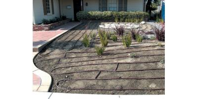 The Differences Between Sprinkler Head & Drip Irrigation Systems, Rochester, New York