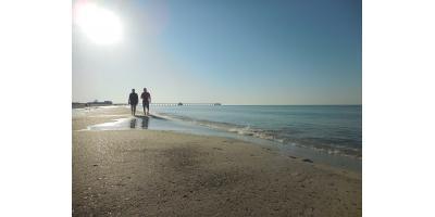 What Should You Do During Your Next Gulf Shores Trip?, Gulf Shores, Alabama