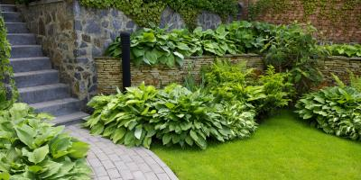 5 Makeover Tips for Gardens With Overgrown Plants, Anchorage, Alaska