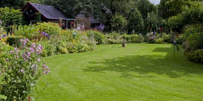 A Guide to Electric Lawn Mowers, ,