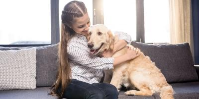 3 Ways Your Pet Impacts Your HVAC System, Ellsworth, Wisconsin