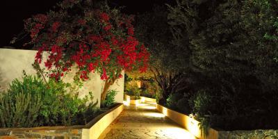 4 Amazing Benefits of Tree Lighting, Cambridge Springs, Pennsylvania