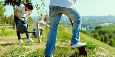 3 Ways to Prevent Soil Erosion on Your Property, Hill, Wisconsin