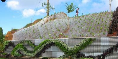 Exterior Designers Share Why You Should Use Green Products, Ewa, Hawaii
