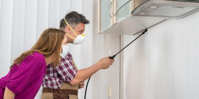 3 Considerations to Make When Looking for an Exterminator, Mobile, Alabama