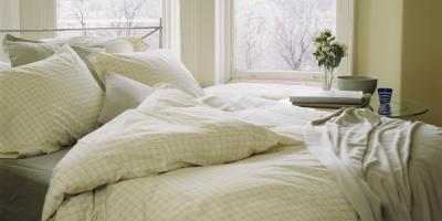 Pest Control Pros Share 3 Tips for Bedbug Infestations , Hebron, Kentucky