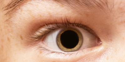 What to Expect When Your Eyes Are Dilated During an Exam, Polson, Montana