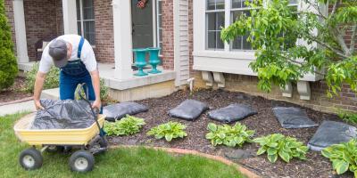 Top 5 Benefits of Mulching Your Lawn, Fairbanks, Alaska
