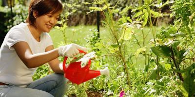 3 Tips for Choosing Garden Supplies, Fairfield, Connecticut