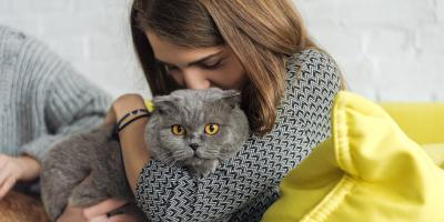 Why Pet Dental Care Is Important, Fairport, New York