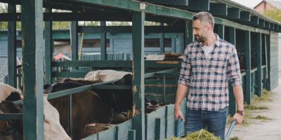 Your Guide to Understanding What Farm Insurance Covers, Enterprise, Alabama