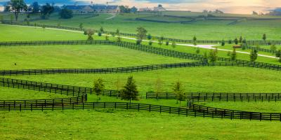 4 Pros & Cons of a Metal Pipe Fence, Claremore, Oklahoma