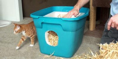 URGENT: LARGE AND SMALL RUBBERMAID BINS NEEDED FOR FERAL CAT SHELTERS! PLEASE HELP!, Stratford, Connecticut