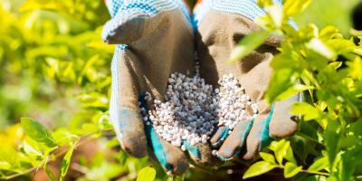 5 Fertilizer Application Tips, Foristell, Missouri