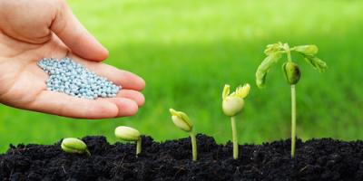 How to Choose the Right Fertilizer for Your Garden, St. Peters, Missouri