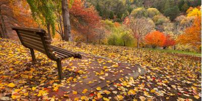 Find Hotels This Fall near Beautiful Holman, WI, Holmen, Wisconsin