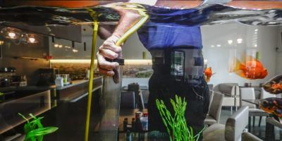 5 Intervals for Cleaning Your Fish Tank, Moraine, Ohio