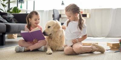 FAQ About Home Insurance for Pet Owners, Kalispell, Montana