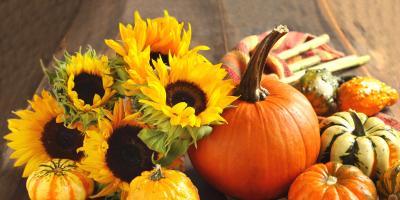 3 Popular Fall Flowers, Branford Center, Connecticut