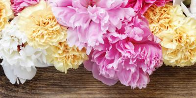 The Deeper Meanings of 5 Beautiful Flowers, Greensboro, North Carolina