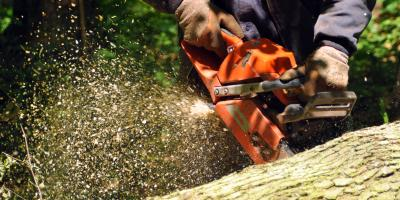 4 FAQ About Maintaining Your Chainsaw, Franklinville, New York