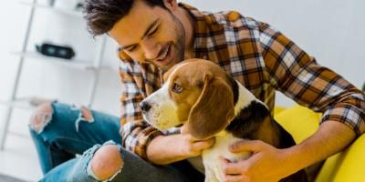 4 Ways to Prepare Your Dog For Boarding , ,