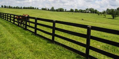 5 Benefits of Installing a Fence on Your Farm, Statesboro, Georgia