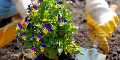 Ohio Garden Center Advises on When & How to Start Your Garden, Quaker City, Ohio