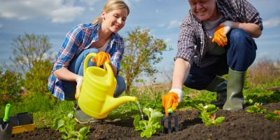 The Do's & Don'ts of Growing Garden Plants, Port Jervis, New York