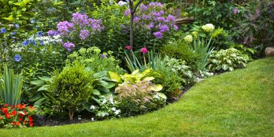How Hamilton's Landscaping Professionals Can Help Your Spring Garden, Hamilton, Ohio