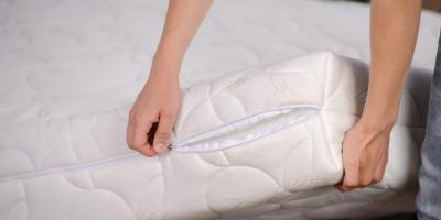 Do's & Don'ts of Bedbug Infestations, 2, Maryland