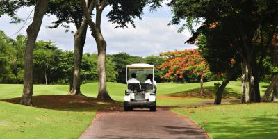 Why You Should Invest in a Golf Cart this Summer, Council Bluffs, Iowa