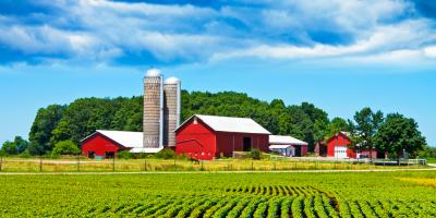 Grain Bins vs. Grain Silos—Which Do You Need?, Platteville, Wisconsin