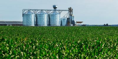 4 Tips From Agronomy Experts for Long-Term Grain Storage, Adams, Wisconsin