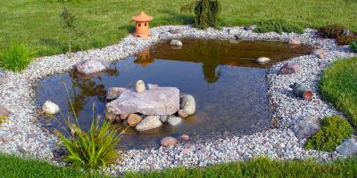 Should You Use Sand or Gravel for a Pond Substrate??, ,