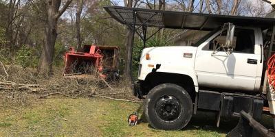 3 Benefits of Brush Removal Services, New London, North Carolina