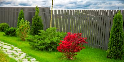 3 Ways Landscaping Services Can Revamp Your Lawn, Hamilton, Ohio