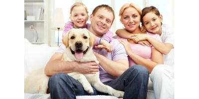 Click here to read about home comfort tips for pet owners!!...., Forked River, New Jersey
