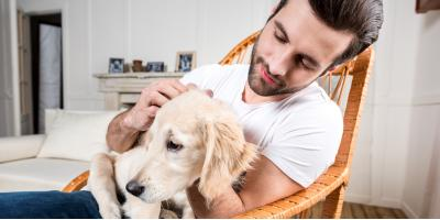 Dog Day Care Shares the Benefits of a Pet Sitter vs. Kenneling, Addison, Illinois