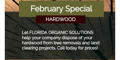 FEBRUARY HARDWOOD SPECIAL, Brandon, Florida