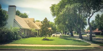 When Should You Get a Tree Removed?, Marshan, Minnesota