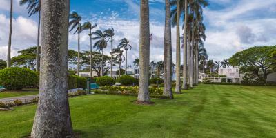 FAQ About Hydroseeding, Koolaupoko, Hawaii