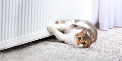 4 FAQ From Homeowners About Heating Systems, Lorimor, Iowa