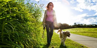 Top 5 Dog Walking Etiquette Rules for Proper Animal Care, Ewa, Hawaii