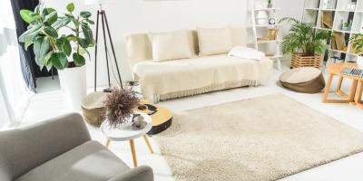 Think You Need a Carpet Cleaner? Here's What You Should Know, Ewa, Hawaii