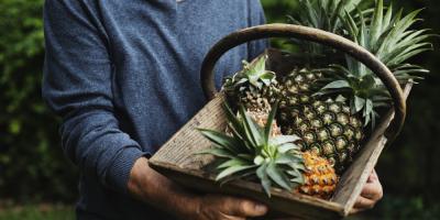 Oahu Growers Share 3 Tips for Choosing a Perfectly Ripe Pineapple, Honolulu, Hawaii