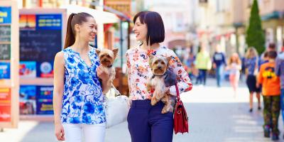 5 Cincinnati Restaurants for You and Your Dog, Newport-Fort Thomas, Kentucky
