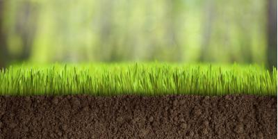 Frequently Asked Lawn Care Questions About Soil Testing, Columbus, Ohio